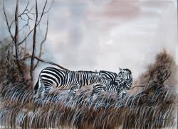 Aswani - Zebra Love