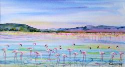 Kahura---Flamingos-on-Lake-Nakuru