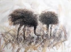 Mbatia - Ostriches Grazing