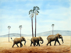 Muturi - Elephants on the March2