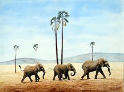 Muturi - Elephants on the March2