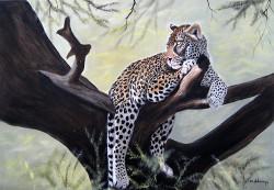 Ndwiga - Leopard on Branch 2