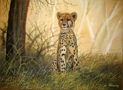 Ndwiga-Young Cheetah