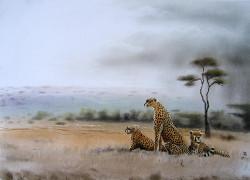 Njeru - Cheetah Family