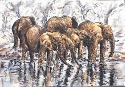 Stephen Mbatia-Refreshing the Elephants-7.5 x 11-Ink and Watercolors on Paper-$50