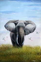 Wanjeri - Bull Elephant
