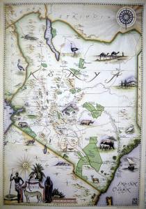 Blue Rhino Map - Kenya