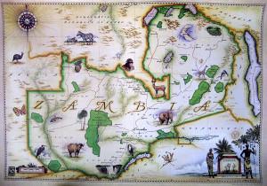 Blue Rhino Map - Zambia