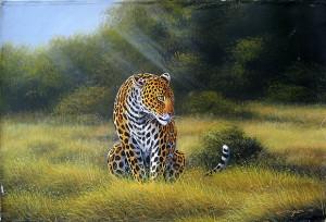 Mugwe - Quiet Leopard