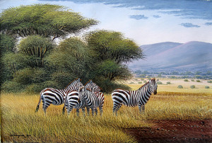 Mugwe - Zebras Waiting