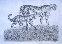Obanda - Cheetah Mother and Child