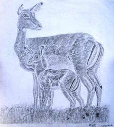 Obanda - Gazelle Mother and Child