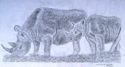 Obanda - Rhino and Child