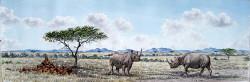 Thinogo-Rhinos in Nairobi National Park